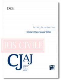 Acción-de-protección-Miriam-Henríquez-Viñas