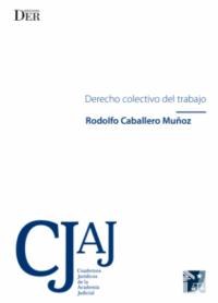 Derecho Colectivo del Trabajo Ediciones DER Autor: Rodolfo Caballero Muñoz ISBN: 978-956-9959-30-1 Formato: 15,5 x 23 cm Edición 2018 174 páginas